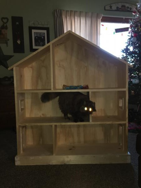 My Uncle Tom Made This Dollhouse Bookcase For My Daughter