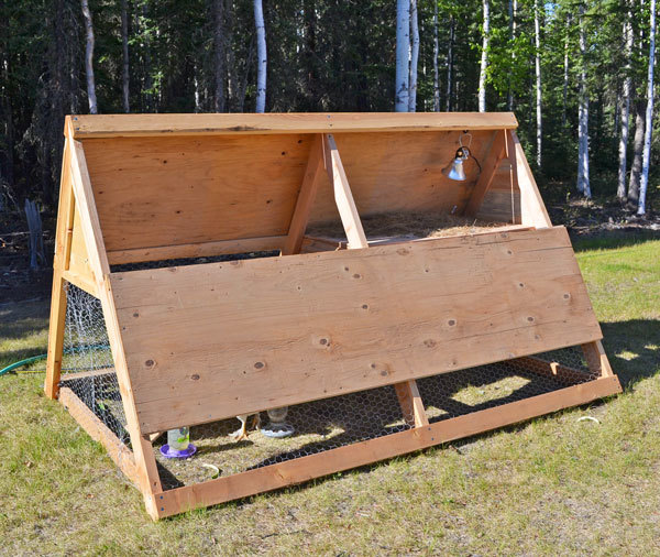 Ana white a frame chicken coop diy projects for Diy small chicken coop