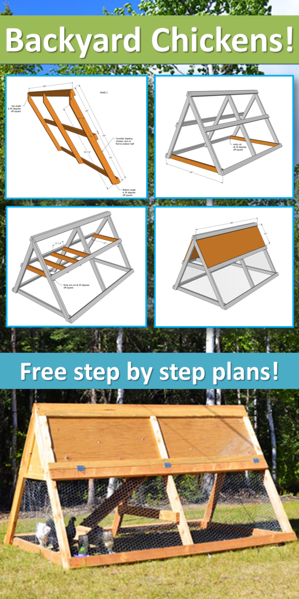 Ana white a frame chicken coop diy projects for Plans chicken coop