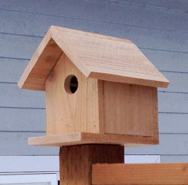 birdhouse side view plans