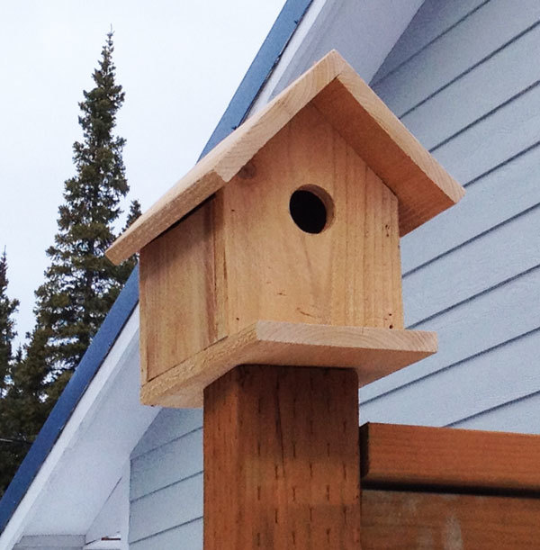 birdhouse front view plans