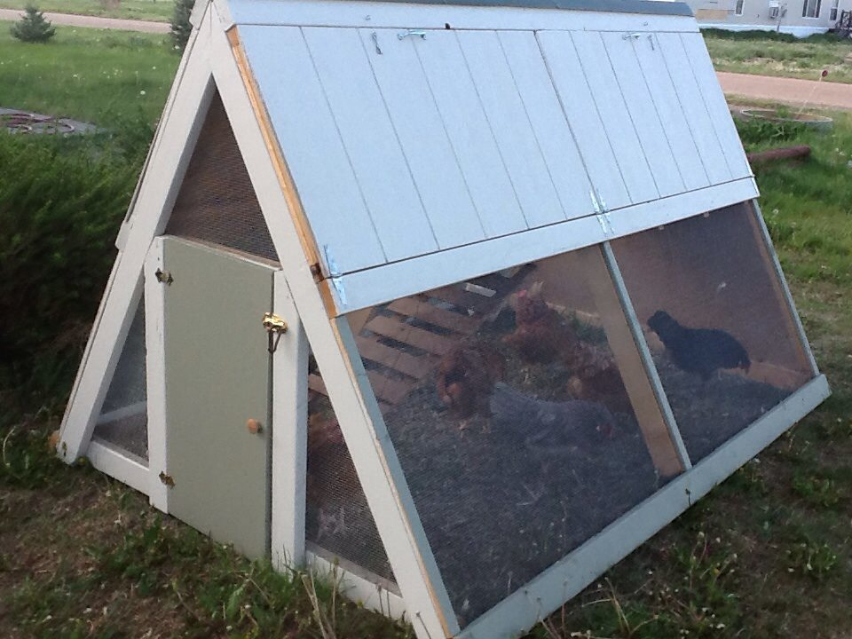 Chicken Coop A Frame - DIY Projects