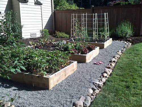 screens for raised garden bed ideas easy home decorating