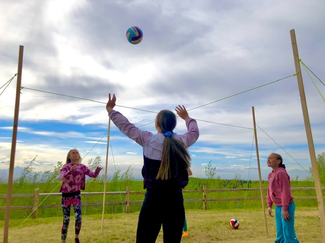 DIY crossnet volleyball game