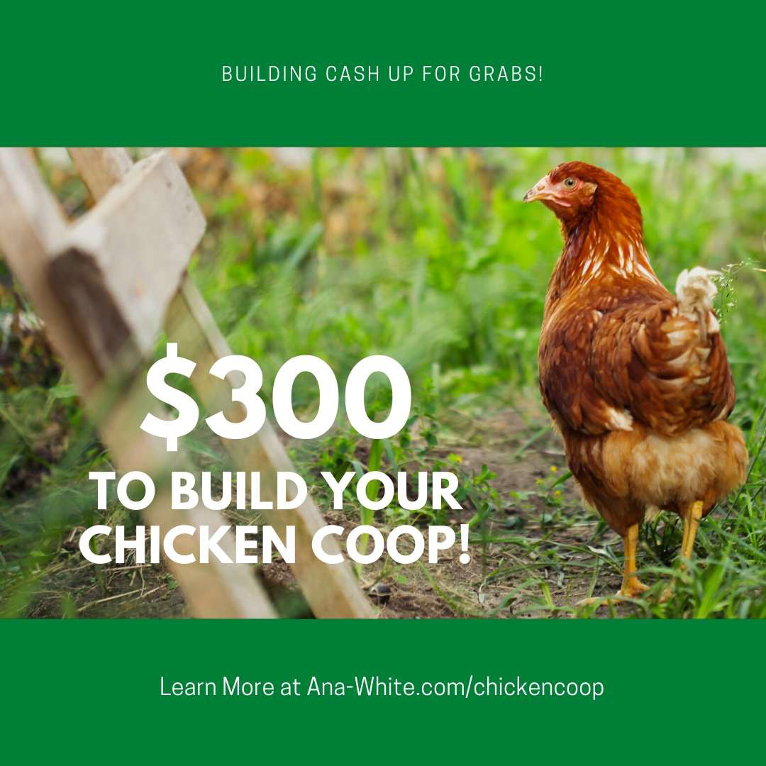 Win $300 to Build Your Own Chicken Coop!