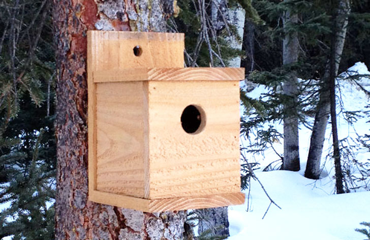 modern birdhouse woodworking plan built