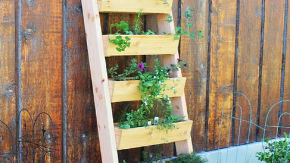 Garden boxes in a ladder arrangement with green plants