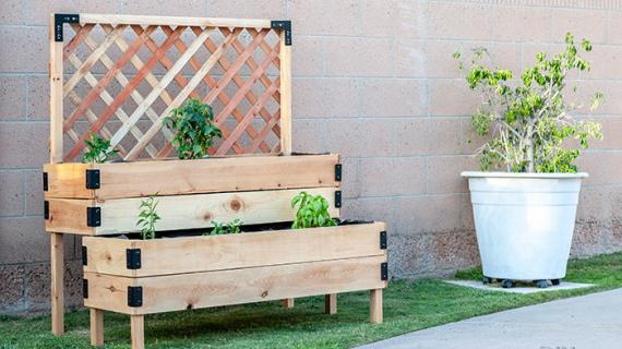 Easy DIY raised planter with trellis in back and plants on patio