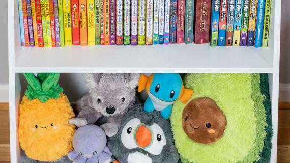 small bookshelf with books and stuffed animals